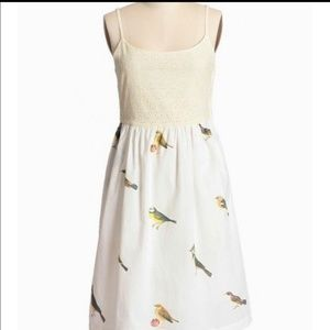 Anthro Knitted Dove Singing with the Birds Dress M
